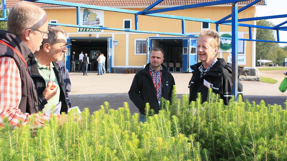 Frdjupad versiktsplan Rimforsa - Linkpings kommun